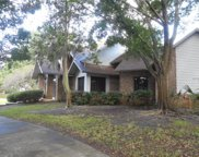 3223 Harvest Moon Drive, Palm Harbor image