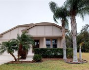 21644 Billowy Jaunt Drive, Land O' Lakes image