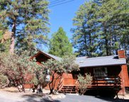 25420 Skyline Way Dr, Idyllwild image