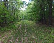 Siggi Lane, Belmont image