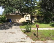 12510 Twisted Oak Drive, Tampa image
