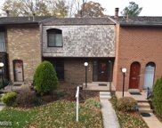 4922 HERKIMER STREET, Annandale image