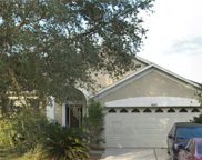 18002 Misty Blue Lane, Tampa image