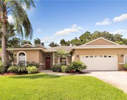 11364 Canterbury Lane, Seminole image