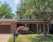 539 Meadow Green  Place, St Louis image