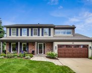 1332 Forever Avenue, Libertyville image
