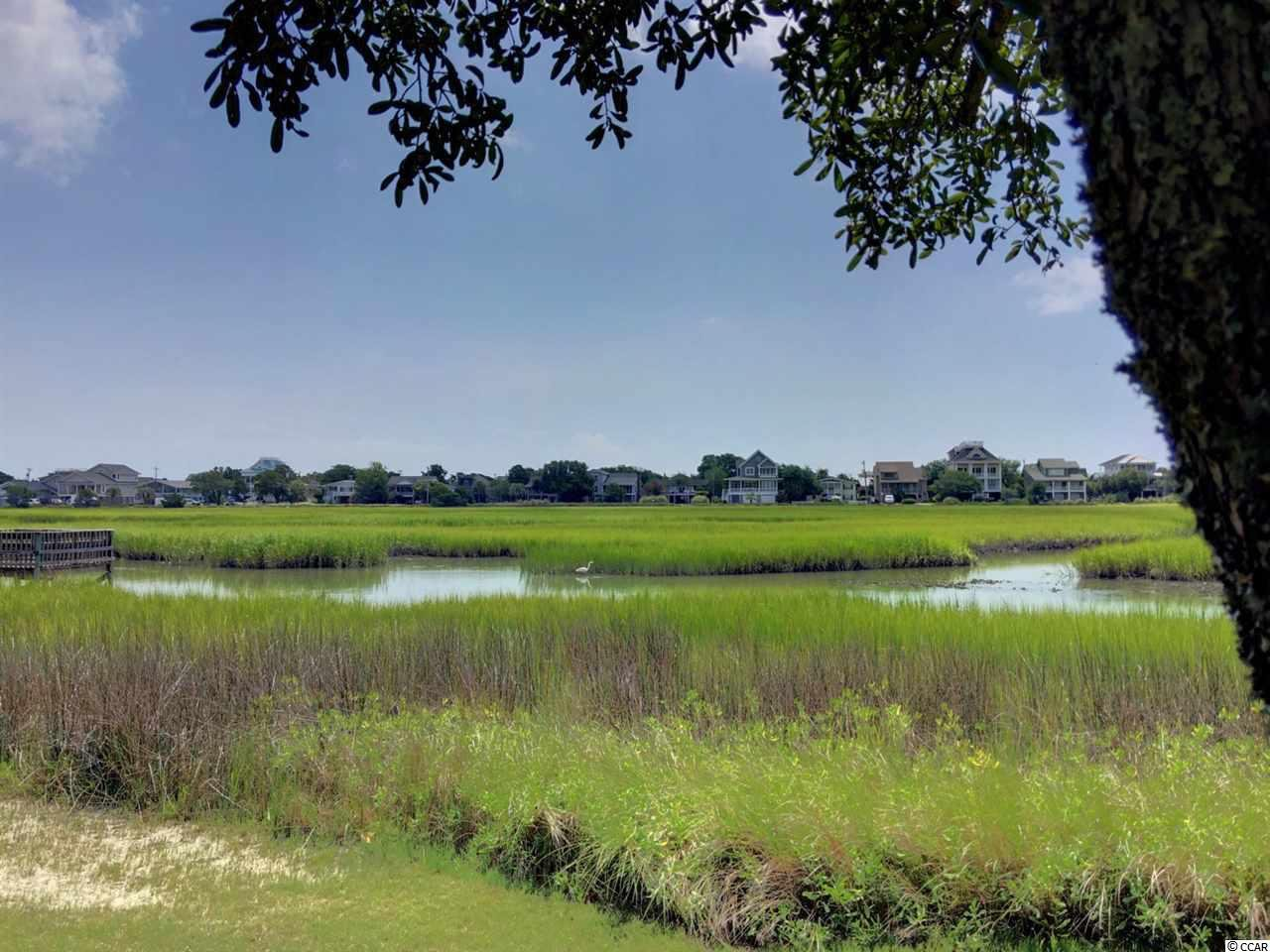Salt Marsh Circle Pawleys Island Sc