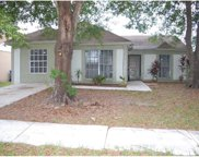 10003 Fawn Grove Place, Tampa image