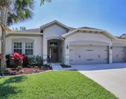15713 Starling Dale Lane, Lithia image