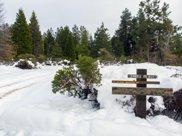 Cayuse Meadows Lane, Mount Shasta image