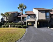 84 Lakeview Circle Unit 115, Pawleys Island image