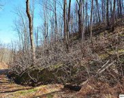Lot 545 Deep Hollow Court, Gatlinburg image