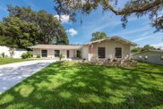 5116 Rolling Hills Court, Tampa image