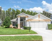 9551 Conservation Drive, New Port Richey image