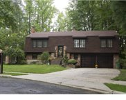 541 Doe Lane, Cherry Hill image