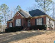 1520 Shelby Forest Ln, Chelsea image