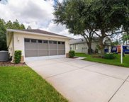 1216 Winding Willow Drive, Trinity image