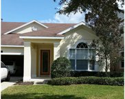 14514 Yellow Butterfly Road, Windermere image