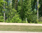 1512 Spring Blossom  Trail Unit #46, Fort Mill image