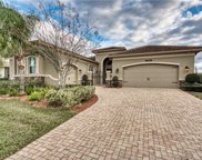 2468 Coco Palm Circle, Wesley Chapel image