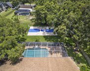 1536 Willow Brook Drive, Palm Harbor image