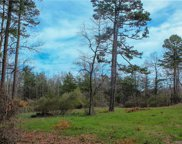 000  Henry Thompson Road, Tryon image