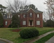 14208 Bald Cypress  Court, Huntersville image