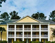 4950 Windsor Green Way Unit 203, Myrtle Beach image