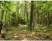 20 Winding Wood Way, Springfield image