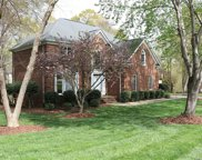 419  Shadydale Court, Fort Mill image