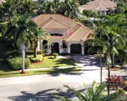690 Carrotwood Ter, Plantation image