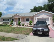 3117 Andros Place, Orlando image