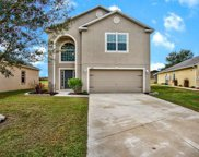 13245 Waterford Castle Drive, Dade City image