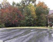 171 Riverwalk Drive, Lyman image