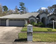 13509 Galena Place, Tampa image