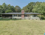 117 Brown St, Pell City image