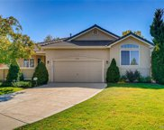 9685 Brook Hill Avenue, Lone Tree image