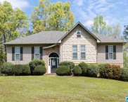 330 Quail Ridge Rd, Odenville image