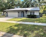 4602 Ridge Point Drive, Tampa image