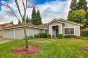 11696  New Albion Drive, Gold River image