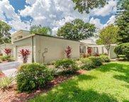 13508 Palmwood Lane Unit 13508, Tampa image