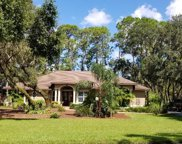 11431 Nellie Oaks Bend, Clermont image