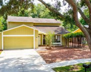 3315 Foxridge Circle, Tampa image