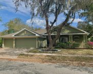24 N Park Circle, Palm Coast image