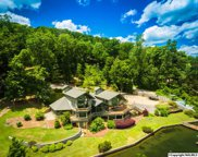 1720 Preston Island Cir, Scottsboro image
