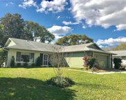 2624 Camille Drive, Palm Harbor image