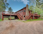 29155 Pine Road, Evergreen image