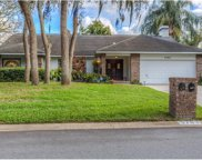 2703 Willow Oaks Drive, Valrico image