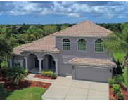 232 Dove Trail, Bradenton image