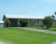 61058 Hwy 231, Oneonta image